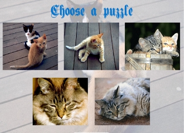 bilder puzzle online spielen
